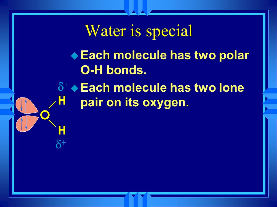 Water is special H O H - u Each molecule has two polar O-H bonds.