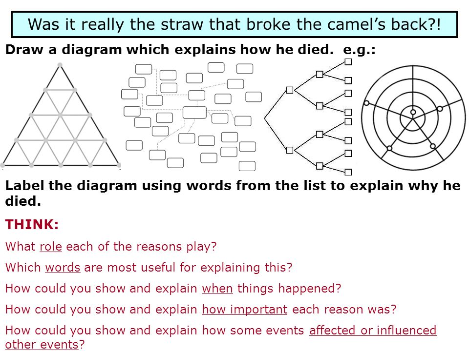 Was it really the straw that broke the camels back?! Draw a diagram which explains how he died. e.g.: Label the diagram using words from the list to e