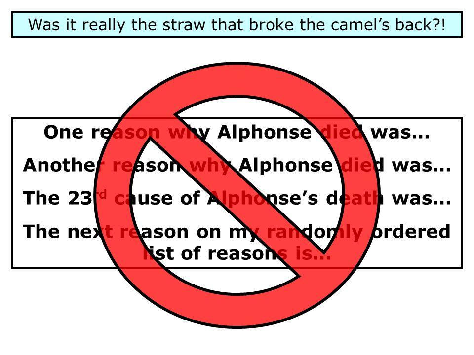 Was it really the straw that broke the camels back?! One reason why Alphonse died was… Another reason why Alphonse died was… The 23 rd cause of Alphon