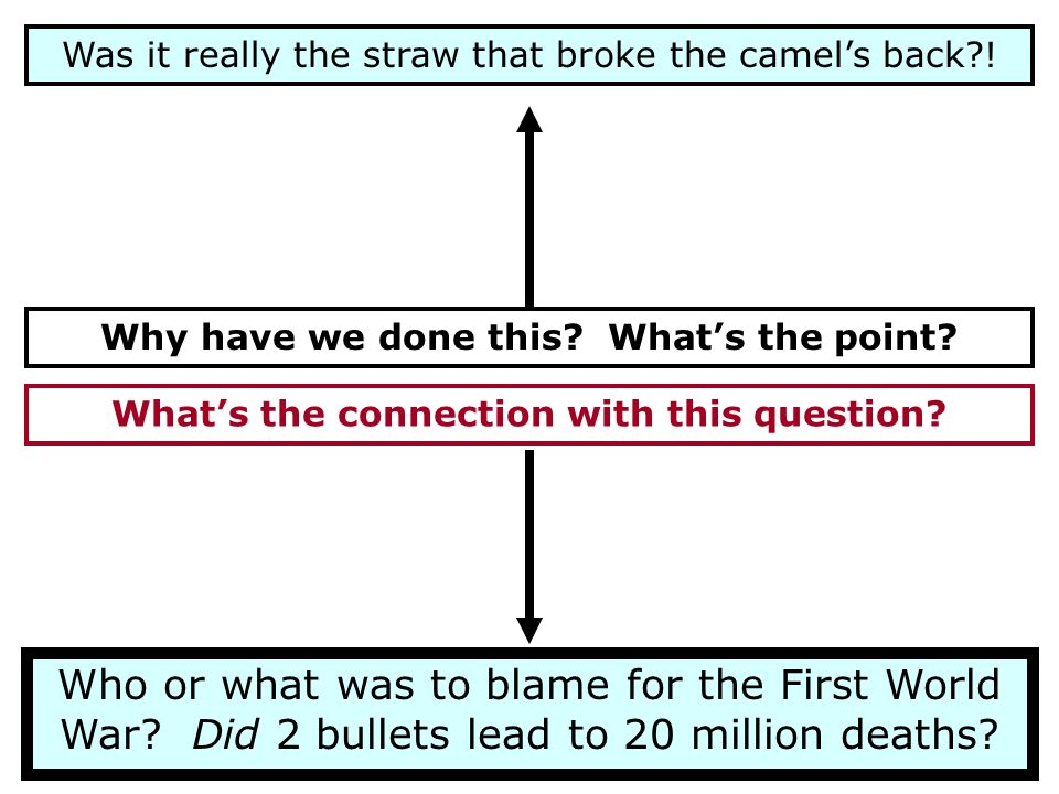 Was it really the straw that broke the camels back?! Why have we done this? Whats the point? Whats the connection with this question? Who or what was
