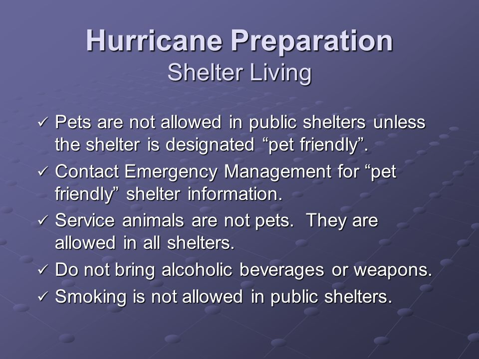 Hurricane Preparation Shelter Living Pets are not allowed in public shelters unless the shelter is designated pet friendly.