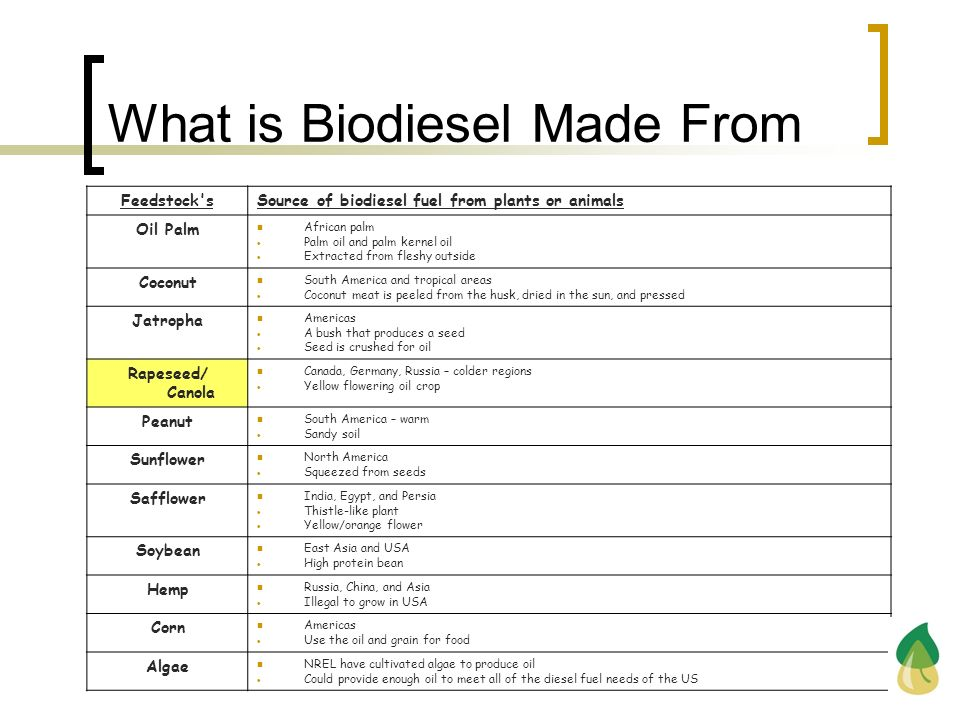 What is Biodiesel Made From Feedstock'sSource of biodiesel fuel from plants or animals Oil Palm African palm Palm oil and palm kernel oil Extracted fr