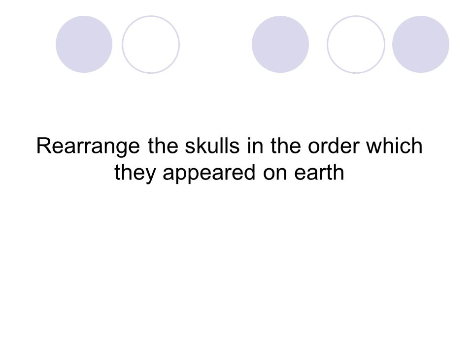 Rearrange the skulls in the order which they appeared on earth