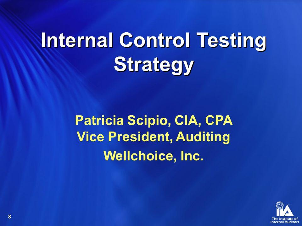 8 Internal Control Testing Strategy Patricia Scipio, CIA, CPA Vice President, Auditing Wellchoice, Inc.