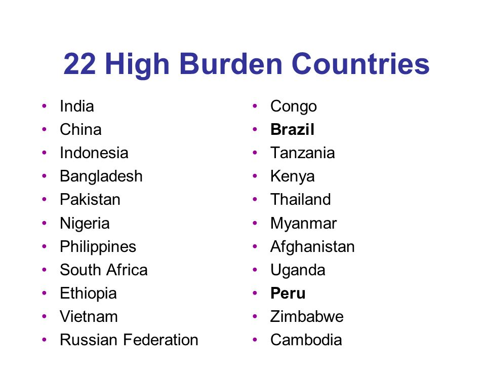 22 High Burden Countries India China Indonesia Bangladesh Pakistan Nigeria Philippines South Africa Ethiopia Vietnam Russian Federation Congo Brazil Tanzania Kenya Thailand Myanmar Afghanistan Uganda Peru Zimbabwe Cambodia