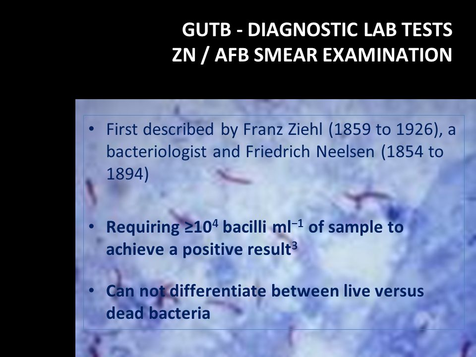 GUTB - DIAGNOSTIC LAB TESTS ZN / AFB SMEAR EXAMINATION First described by Franz Ziehl (1859 to 1926), a bacteriologist and Friedrich Neelsen (1854 to