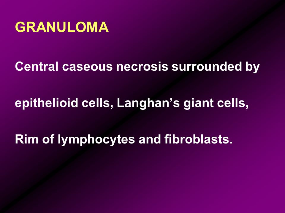 GRANULOMA Central caseous necrosis surrounded by epithelioid cells, Langhans giant cells, Rim of lymphocytes and fibroblasts.