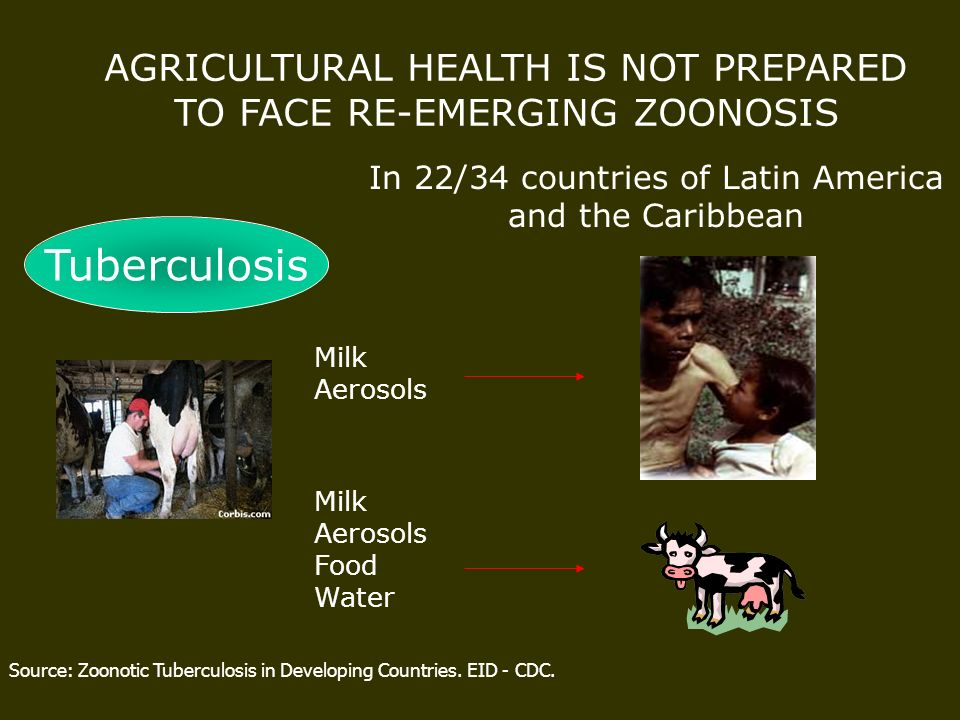 Source: Zoonotic Tuberculosis in Developing Countries. EID - CDC. AGRICULTURAL HEALTH IS NOT PREPARED TO FACE RE-EMERGING ZOONOSIS In 22/34 countries