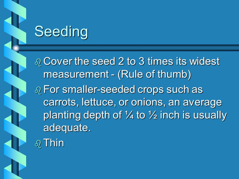 Seeding b Cover the seed 2 to 3 times its widest measurement - (Rule of thumb) b For smaller-seeded crops such as carrots, lettuce, or onions, an aver