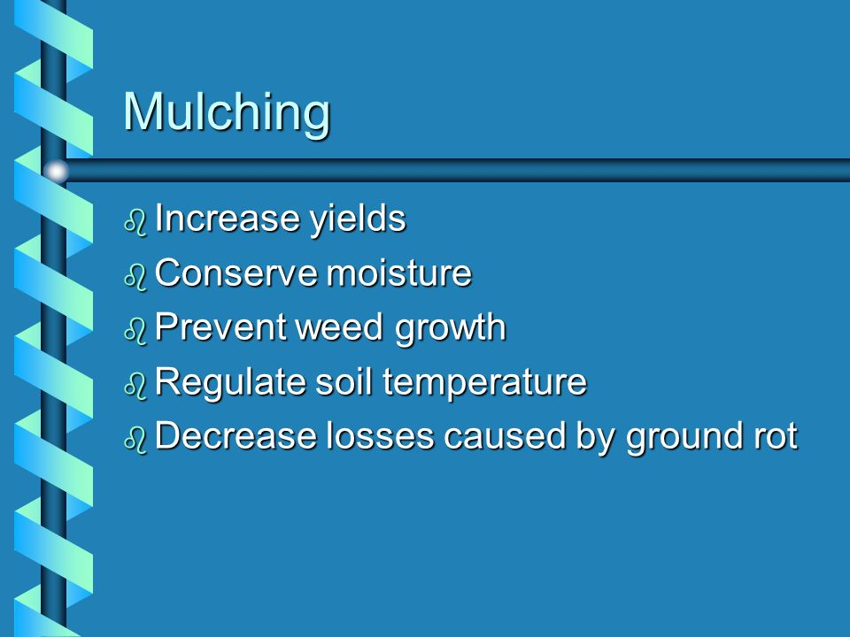 Mulching b Increase yields b Conserve moisture b Prevent weed growth b Regulate soil temperature b Decrease losses caused by ground rot