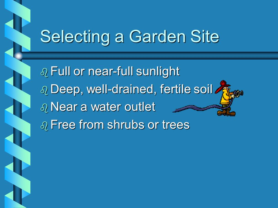 Selecting a Garden Site b Full or near-full sunlight b Deep, well-drained, fertile soil b Near a water outlet b Free from shrubs or trees