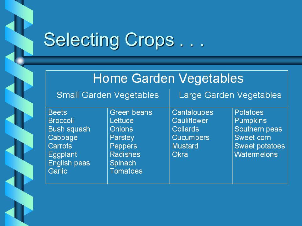 Selecting Crops...