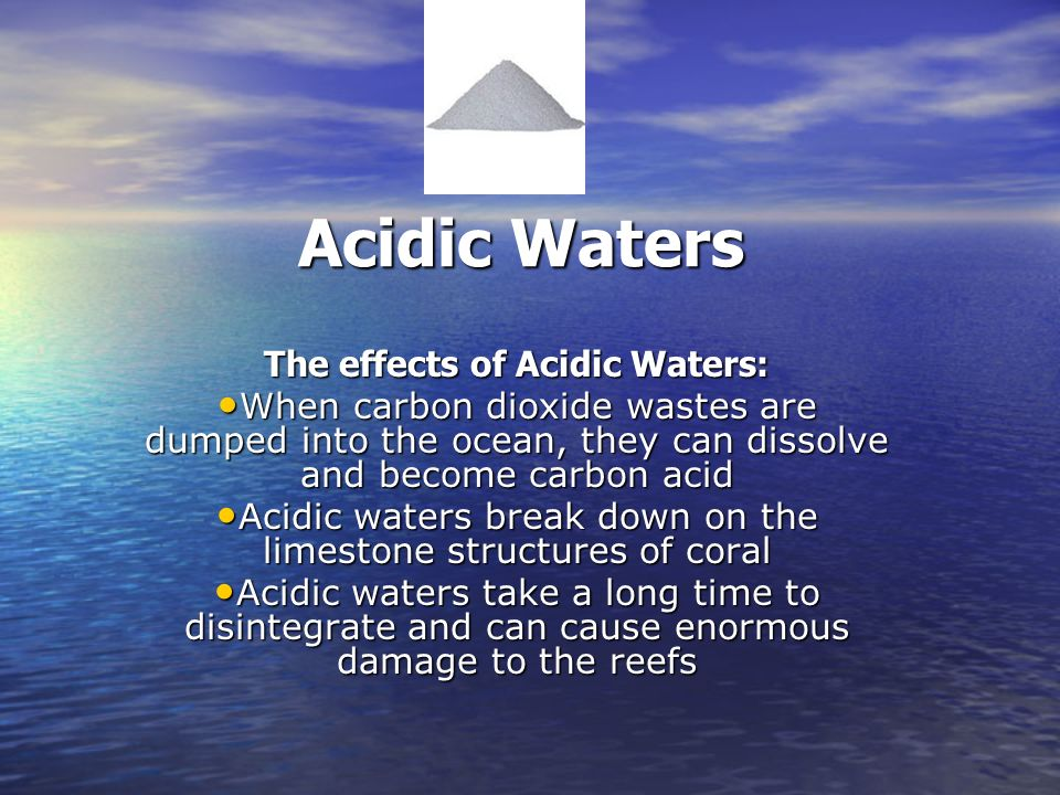 Acidic Waters The effects of Acidic Waters: When carbon dioxide wastes are dumped into the ocean, they can dissolve and become carbon acid When carbon