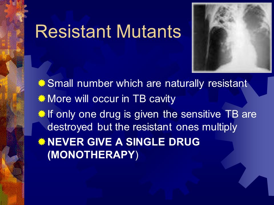 Resistant Mutants Small number which are naturally resistant More will occur in TB cavity If only one drug is given the sensitive TB are destroyed but