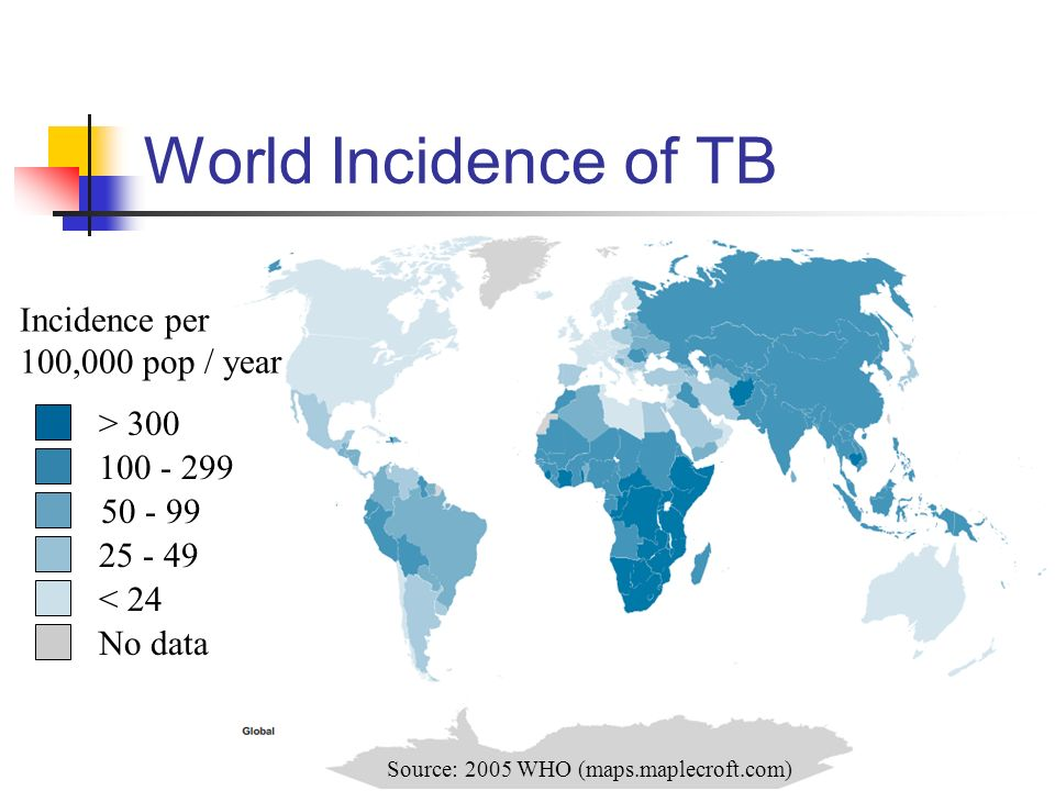 World Incidence of TB > 300 100 - 299 50 - 99 25 - 49 < 24 No data Source: 2005 WHO (maps.maplecroft.com) Incidence per 100,000 pop / year