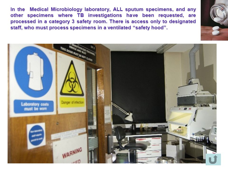 In the Medical Microbiology laboratory, ALL sputum specimens, and any other specimens where TB investigations have been requested, are processed in a