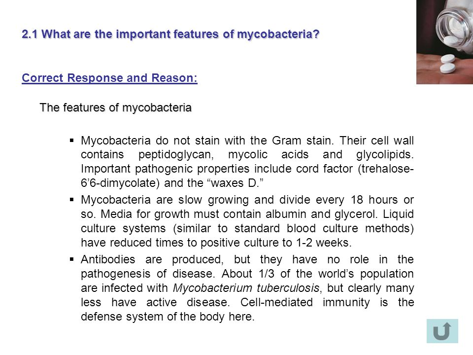 2.1 What are the important features of mycobacteria? Correct Response and Reason: The features of mycobacteria Mycobacteria do not stain with the Gram