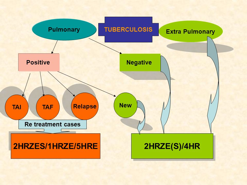 Pulmonary Extra Pulmonary Positive Negative TAITAF Relapse New 2HRZES/1HRZE/5HRE 2HRZE(S)/4HR Re treatment cases TUBERCULOSIS
