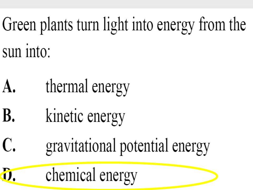 What is the correct formula for kinetic energy? A. KE=1/2mv 1 A. KE=1/2mv 1 B. KE=1/2mv 2 B. KE=1/2mv 2 C. KE=1/2mv 3 C. KE=1/2mv 3 D. KE=mgh D. KE=mg