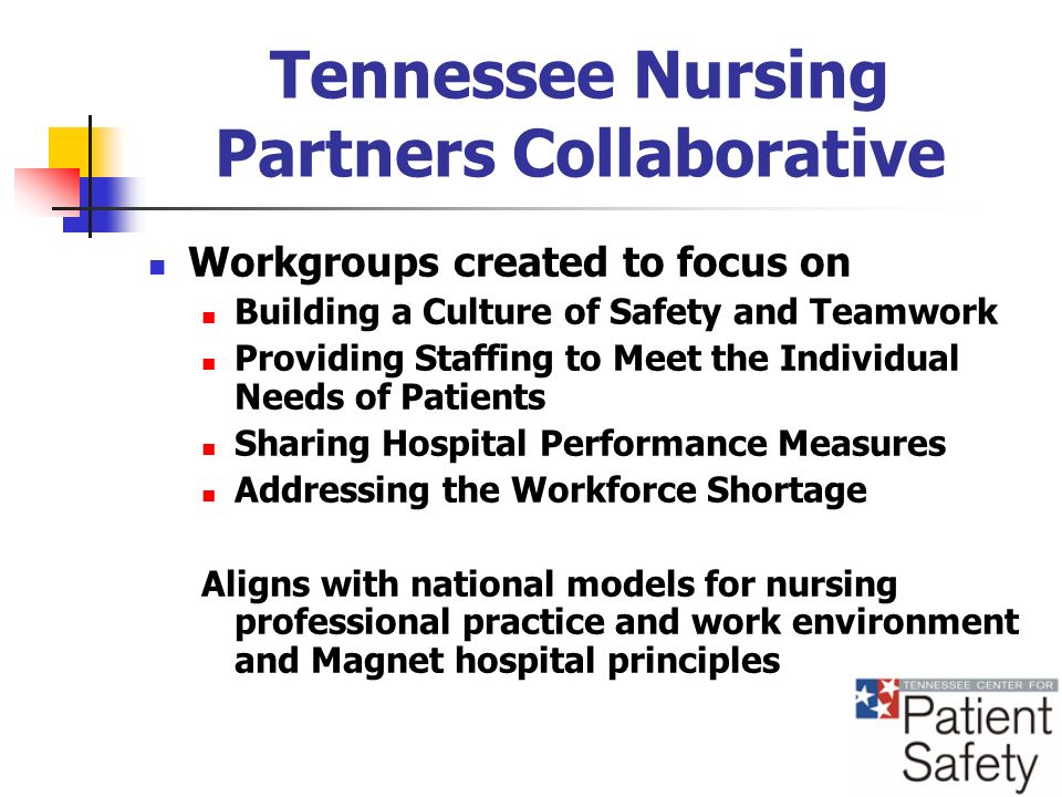 Tennessee Nursing Partners Collaborative Workgroups created to focus on Building a Culture of Safety and Teamwork Providing Staffing to Meet the Individual Needs of Patients Sharing Hospital Performance Measures Addressing the Workforce Shortage Aligns with national models for nursing professional practice and work environment and Magnet hospital principles