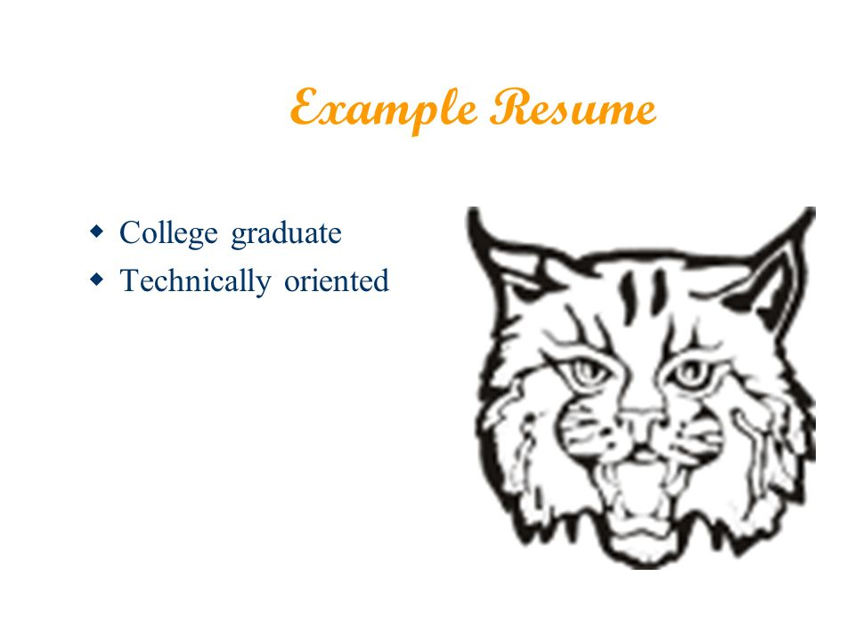 Example Resume College graduate Technically oriented