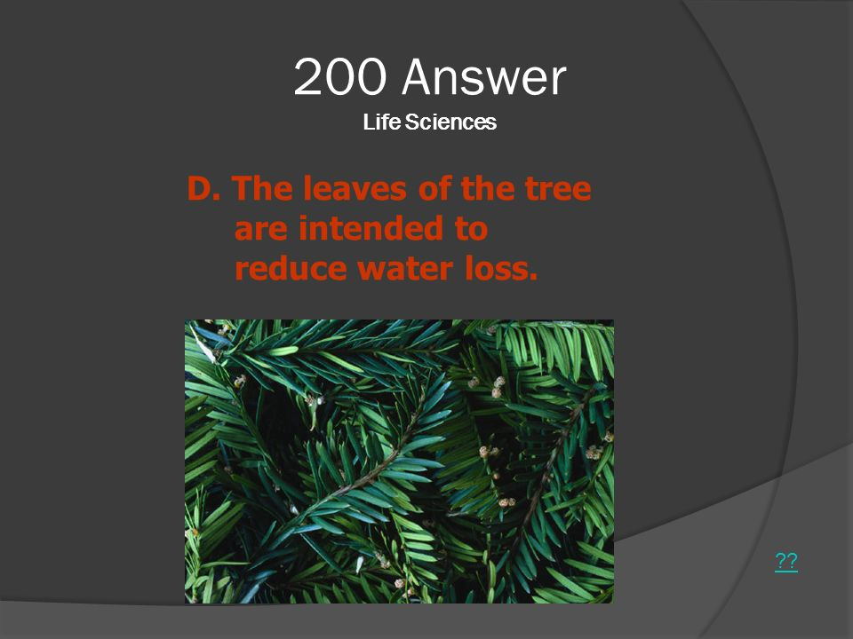200 Answer Life Sciences ?? D. The leaves of the tree are intended to reduce water loss.