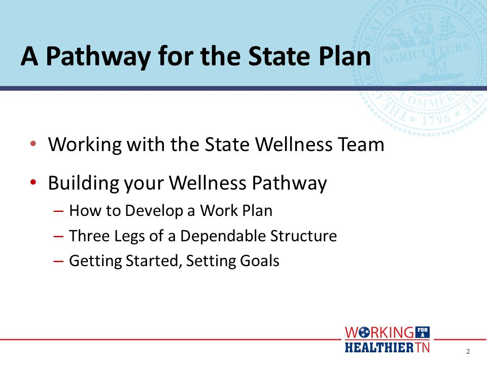 2 A Pathway for the State Plan Working with the State Wellness Team Building your Wellness Pathway – How to Develop a Work Plan – Three Legs of a Depe