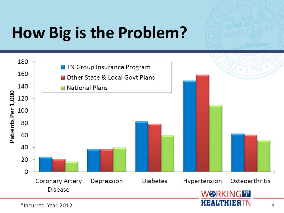 How Big is the Problem? *Incurred Year 2012 4