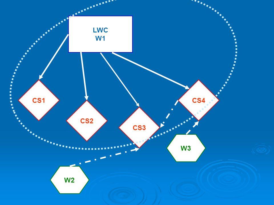 LWC W1 CS1 CS3 CS4 W2 W3 CS2