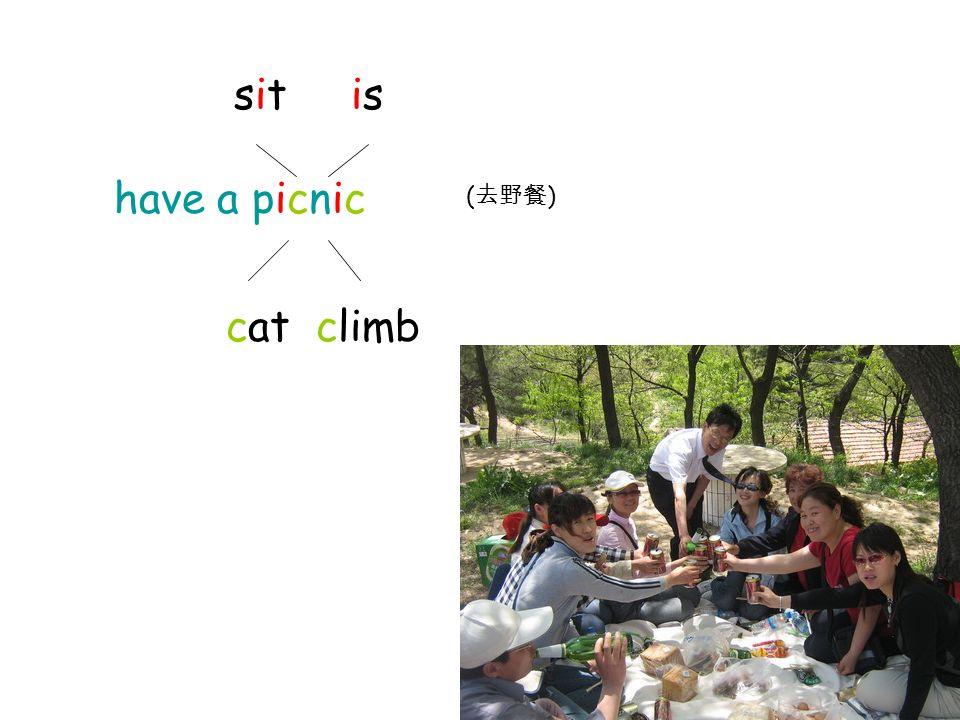 sit is have a picnic cat climb ( )