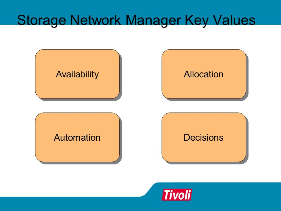 Storage Network Manager Key Values Allocation Availability Decisions Automation