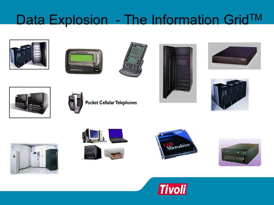 Data Explosion - The Information Grid TM