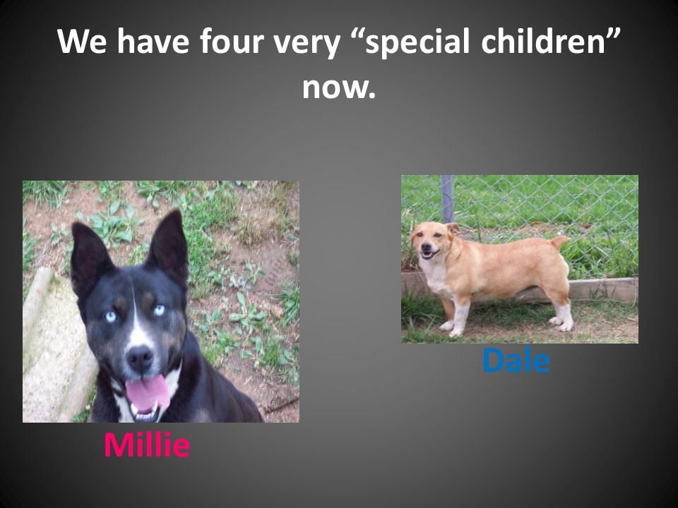 We have four very special children now. Dale Millie
