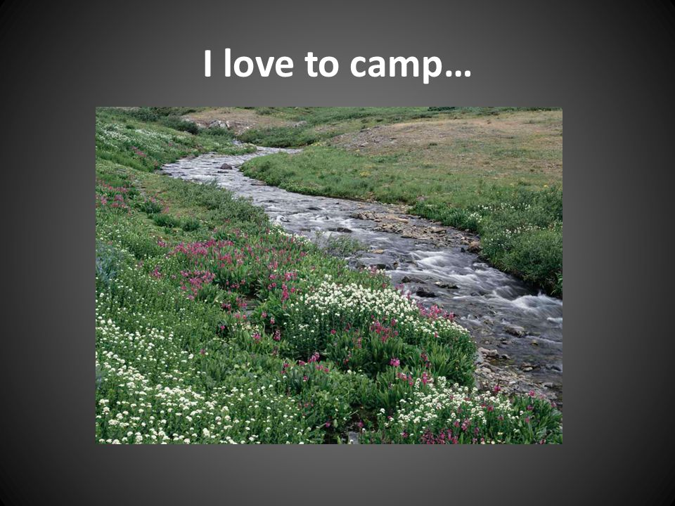 I love to camp…