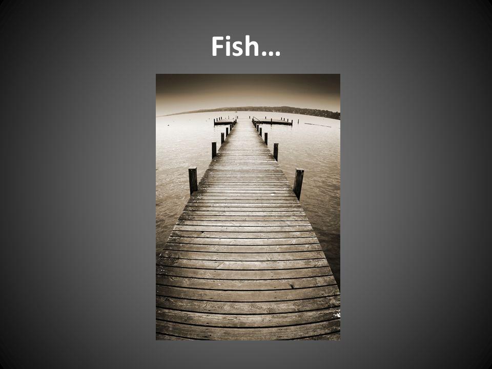 Fish…
