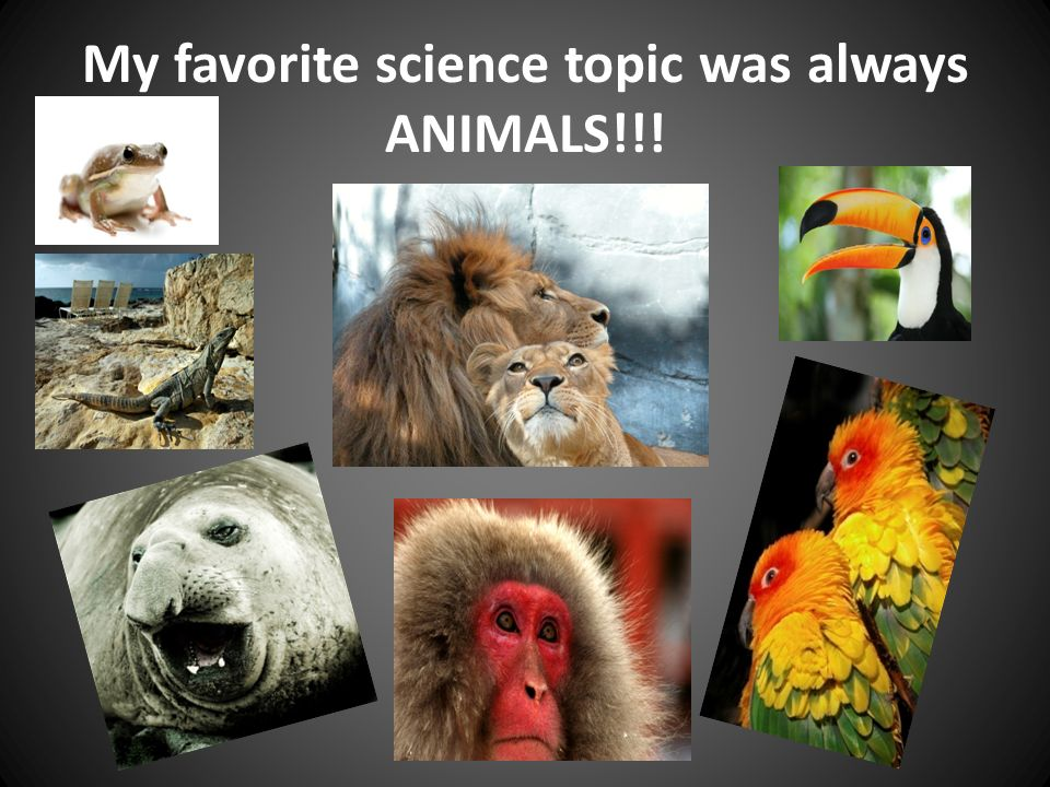 My favorite science topic was always ANIMALS!!!