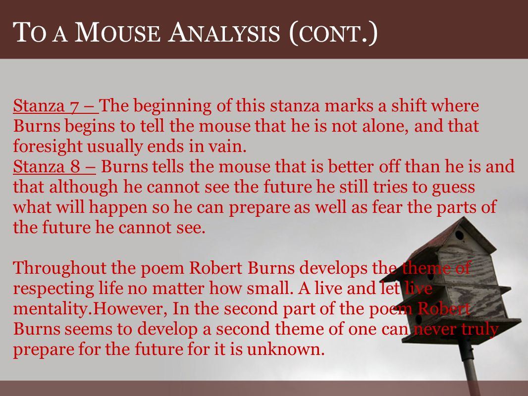 T O A M OUSE A NALYSIS ( CONT.) Stanza 7 – The beginning of this stanza marks a shift where Burns begins to tell the mouse that he is not alone, and that foresight usually ends in vain.