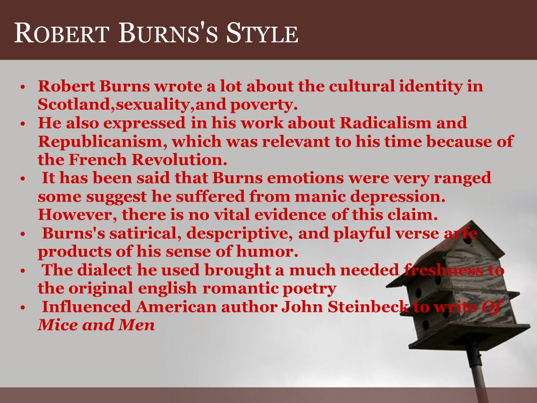 R OBERT B URNS S S TYLE Robert Burns wrote a lot about the cultural identity in Scotland,sexuality,and poverty.