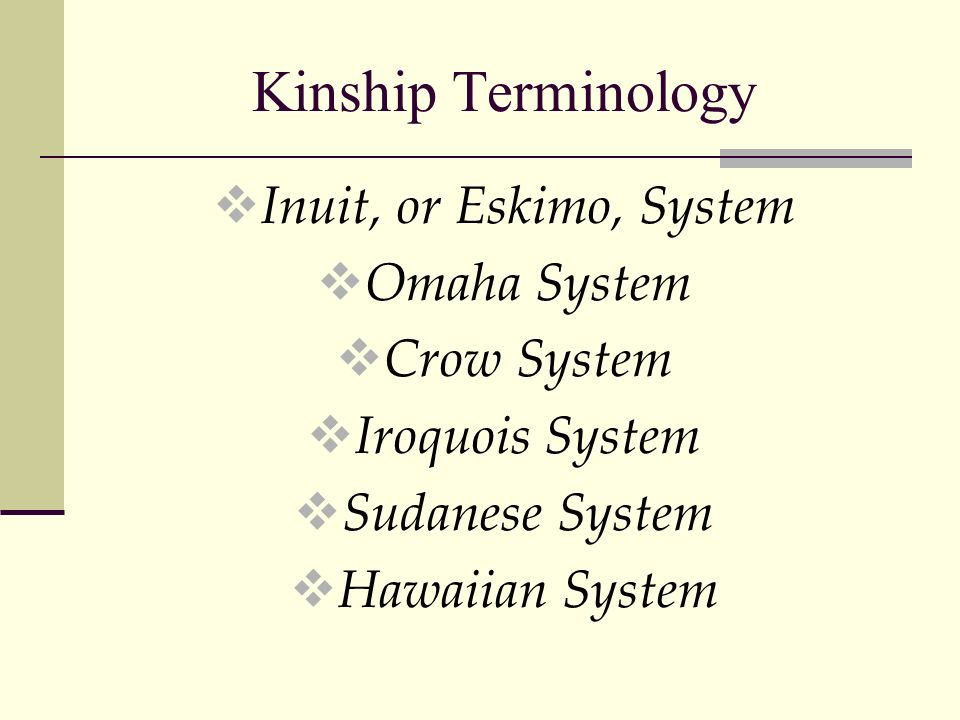 the iroquois kinship system The kinship system of the iroquois culture as one of the first known cultures in north america, the iroquois indians were located in the northeastern part of what is.