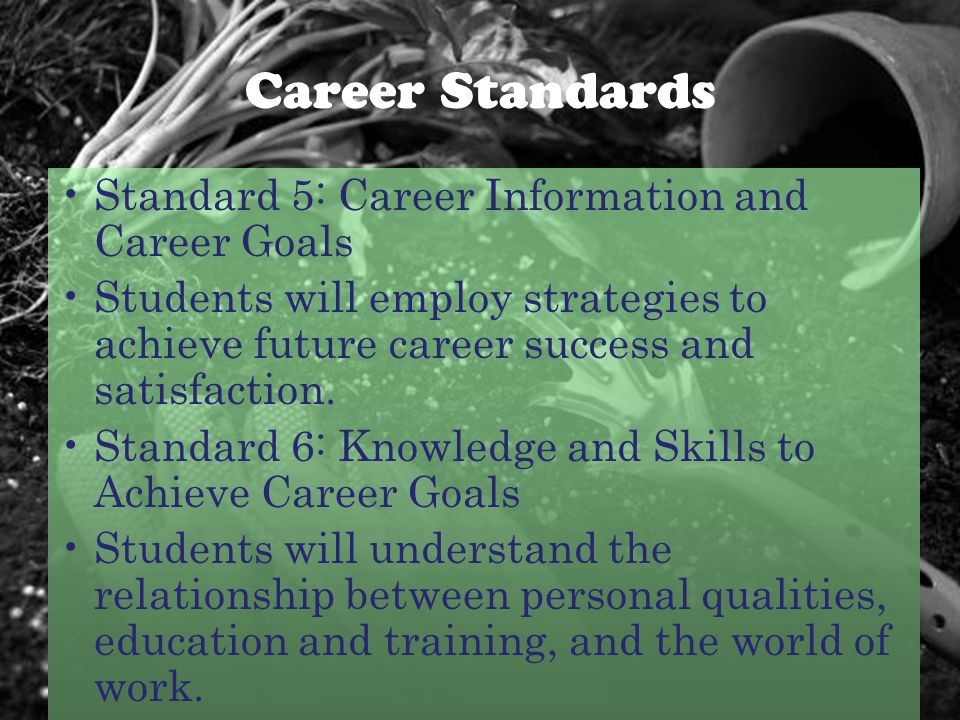 Career Standards Standard 5: Career Information and Career Goals Students will employ strategies to achieve future career success and satisfaction.