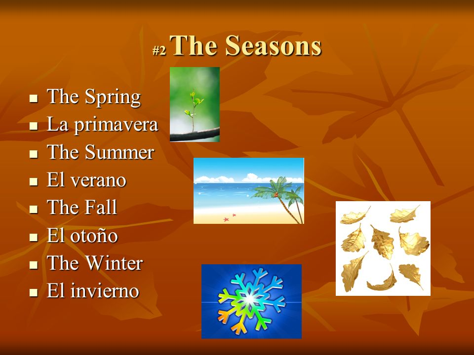 #2 The Seasons The Spring The Spring La primavera La primavera The Summer The Summer El verano El verano The Fall The Fall El otoño El otoño The Winter The Winter El invierno El invierno