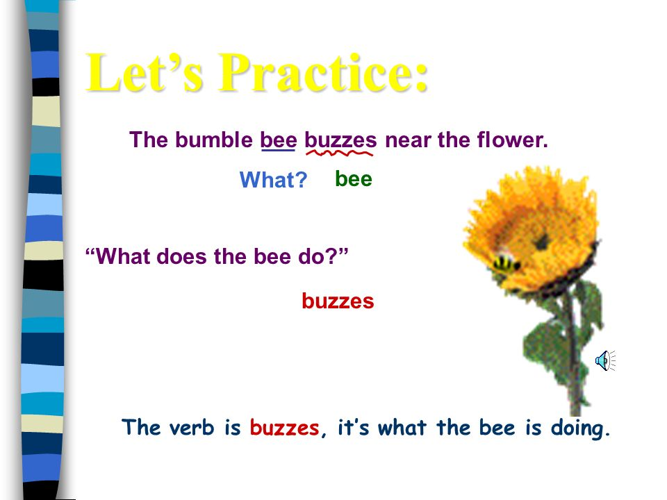 The bumble bee buzzes near the flower.What. buzzes bee What does the bee do.