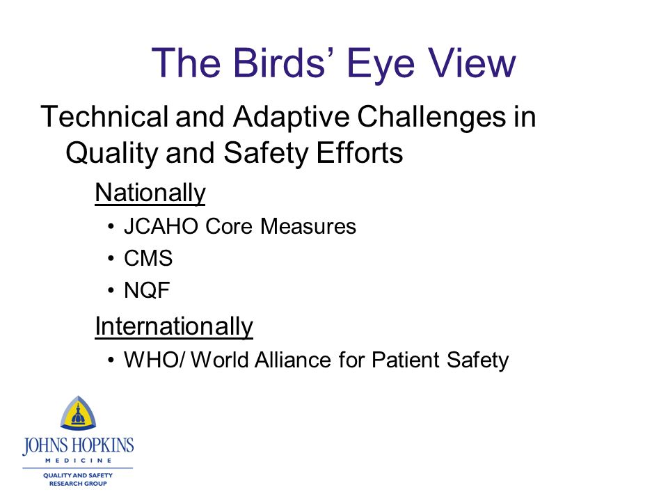 The Birds Eye View Technical and Adaptive Challenges in Quality and Safety Efforts Nationally JCAHO Core Measures CMS NQF Internationally WHO/ World Alliance for Patient Safety