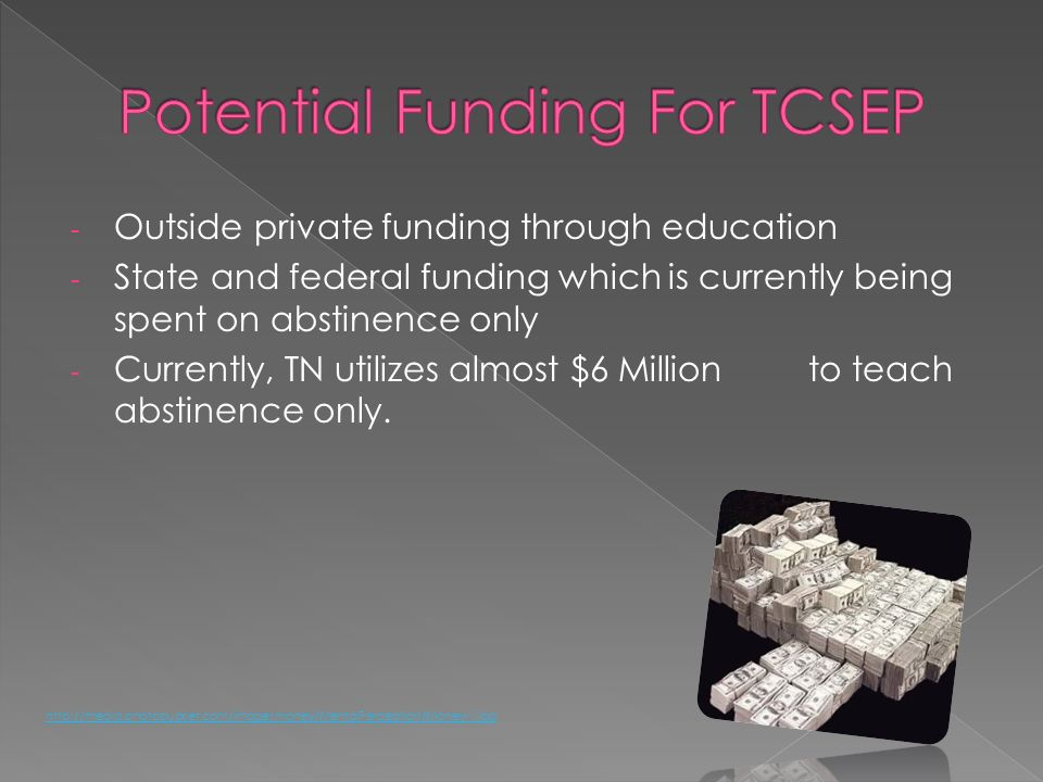 - Outside private funding through education - State and federal funding which is currently being spent on abstinence only - Currently, TN utilizes alm