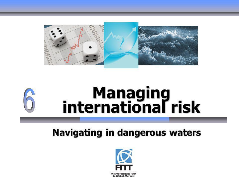 Managing international risk Navigating in dangerous waters