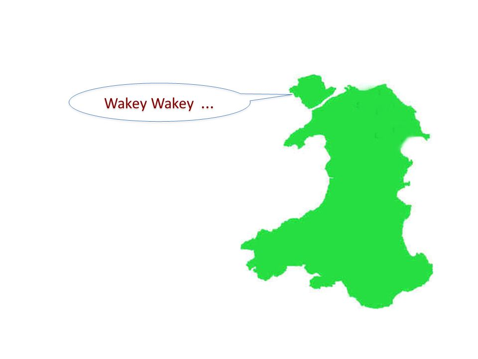 Wakey Wakey...