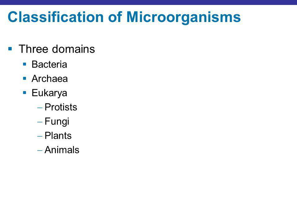 Classification of Microorganisms Three domains Bacteria Archaea Eukarya Protists Fungi Plants Animals