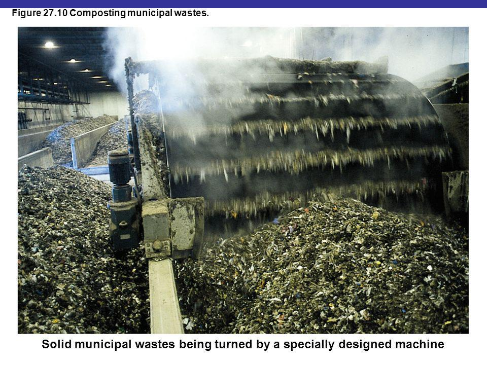 Figure 27.10 Composting municipal wastes. Solid municipal wastes being turned by a specially designed machine