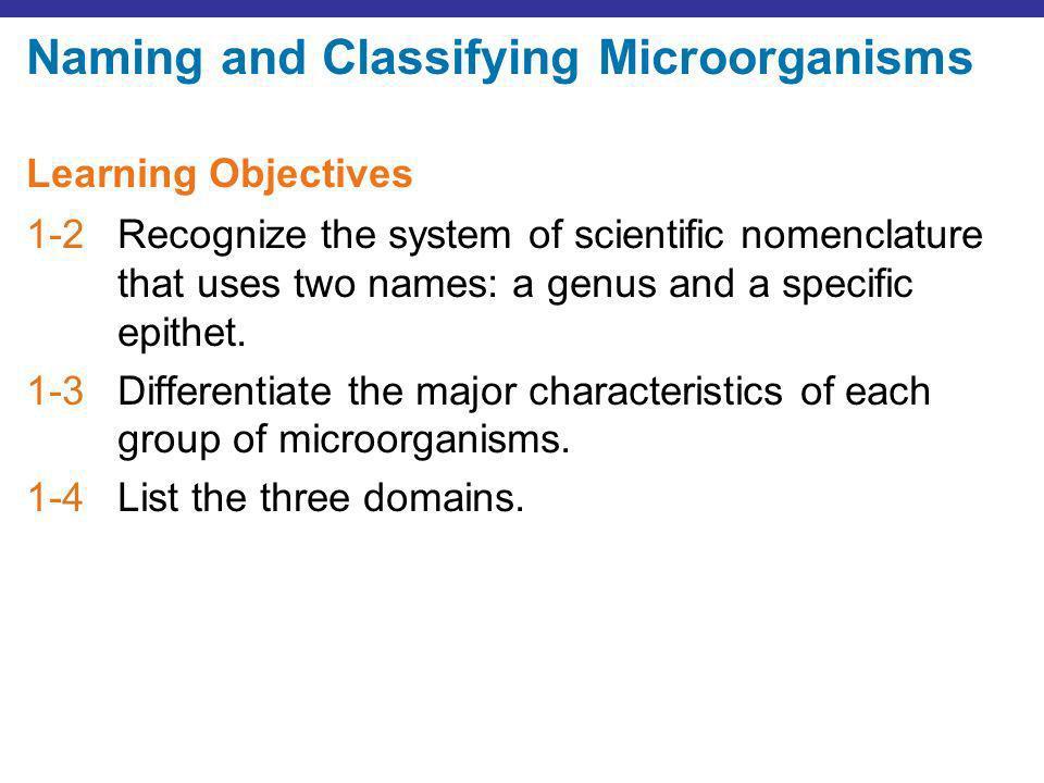 Figure 1.1b Types of microorganisms.Sporangia © 2013 Pearson Education, Inc.