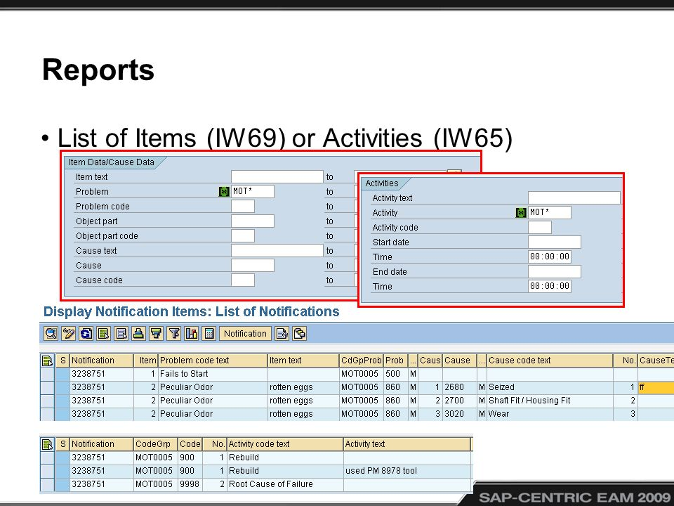 Reports List of Items (IW69) or Activities (IW65)